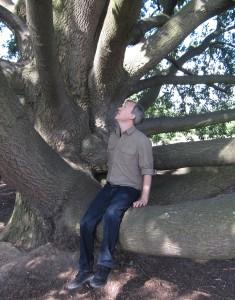HJ Sagan Tree